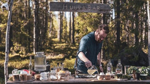 Discover the forest bars in Sweden where all the cocktail ingredients are foraged