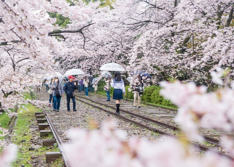 Fall In Love With These Gorgeous Scenes From Japan