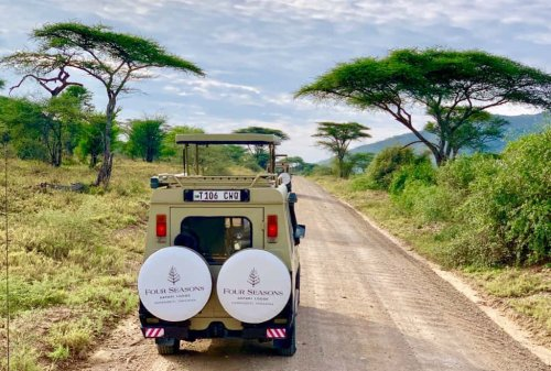 African Safari!