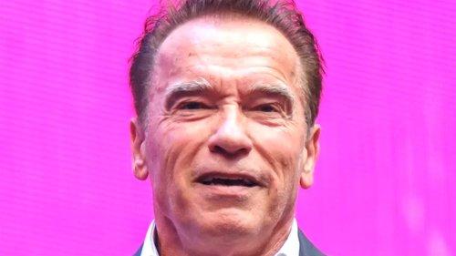 The Surprising Movie Arnold Schwarzenegger Calls His Best Film