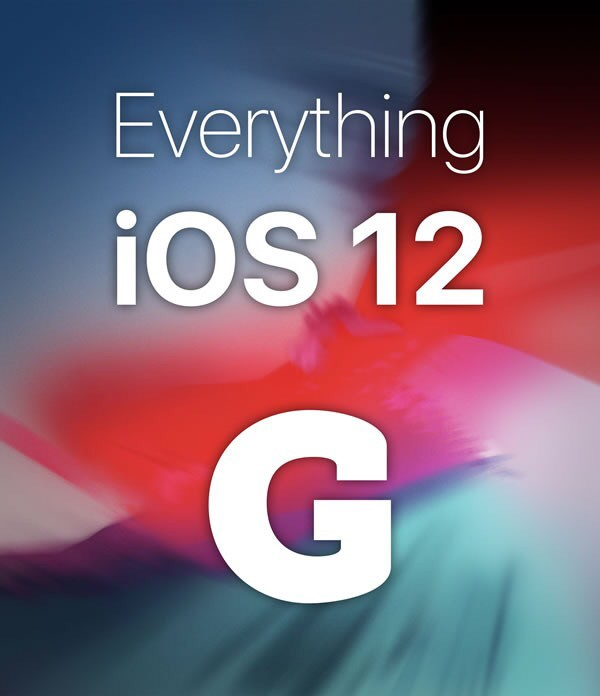 Everything iOS12 cover image