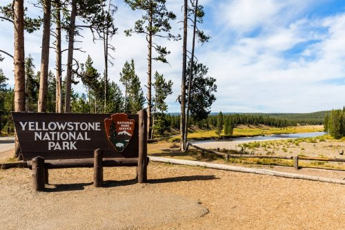 Planning a Trip to yellowstone national park