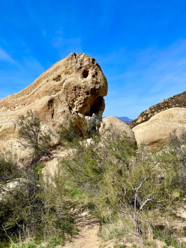Trekking Trails