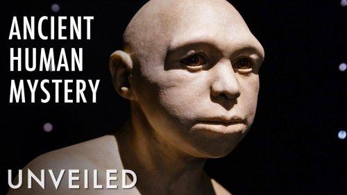 Did Ancient Humans Hibernate? | Unveiled
