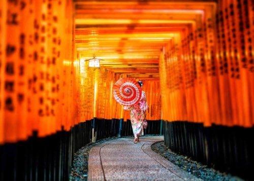 Summer Fun in West Japan