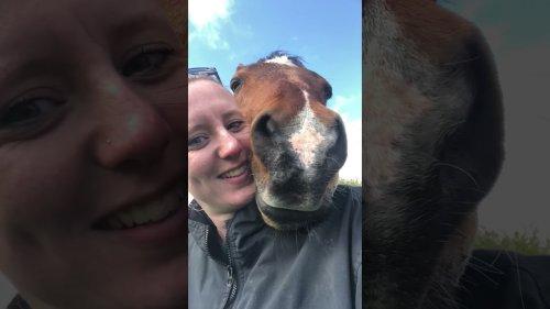 Horse Scoops in Owner's Selfie