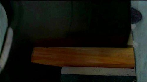 Bamboo cricket bat beats willow, scientists say