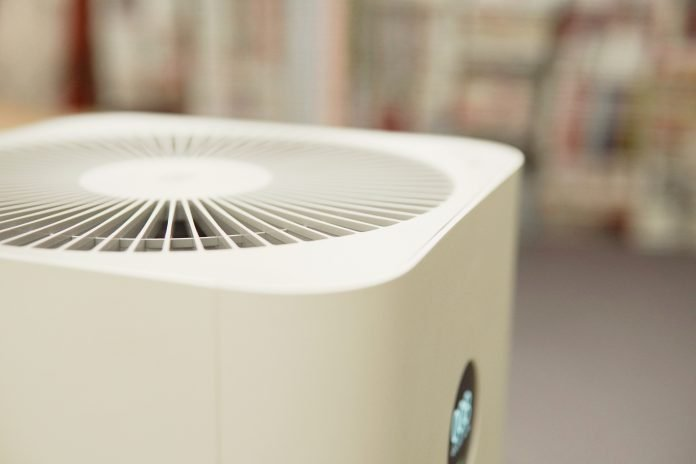 Do Air Purifiers Work? Everything You Need to Know
