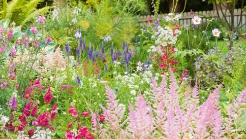 This is how to create an eco-friendly garden