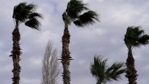 Brace for Hurricane Impact With the Arrival of Hurricane Preparedness Week