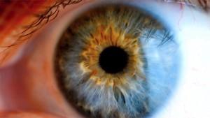 Scientists Develop Technique That Could Cure Blindness
