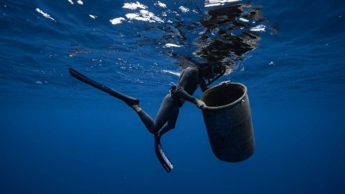 Swimming through the Great Pacific Garbage Patch–and 4 more captivating stories