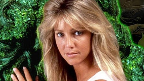 Heather Locklear & Other Vanished Stars, Where Are They Now?