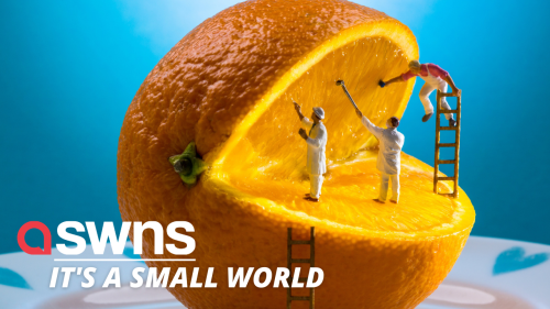Artist creates mini worlds from fruits, vegetables and random household objects!