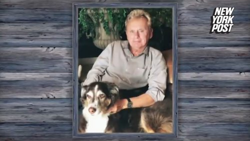 'Wheel Of Fortune' fans comfort Pat Sajak after dog's death revealed on air