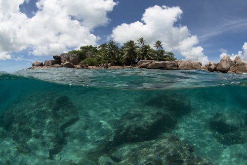 Seychelles Finds A Novel Way To Swap Its Debt For Marine Protections