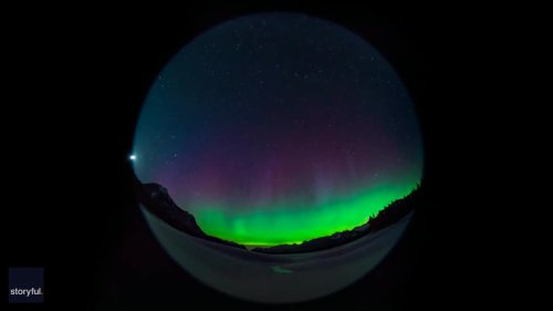 Northern Lights Shimmer Green and Purple Over Snowy Alberta