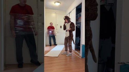 Kid pranks dad with kangaroo cosplay