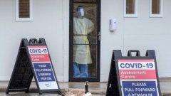 Discover covid 19 cases ontario