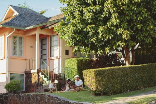 A Non-Profit Wants to Save Every Neighborhood Tree in Honolulu