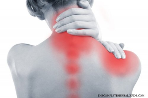 The Ultimate Guide On How To Get Rid Of Pain