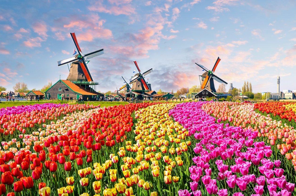 Urlaub in Holland - 10 tolle Reise-Ideen im Überblick