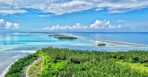 Assist Indulgent Maldivian's - AIM - Volunteers    cover image