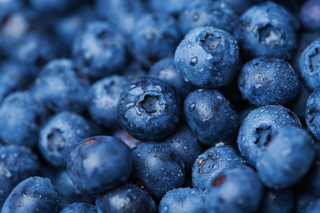 11 Best Brain Foods to Stay Sharp
