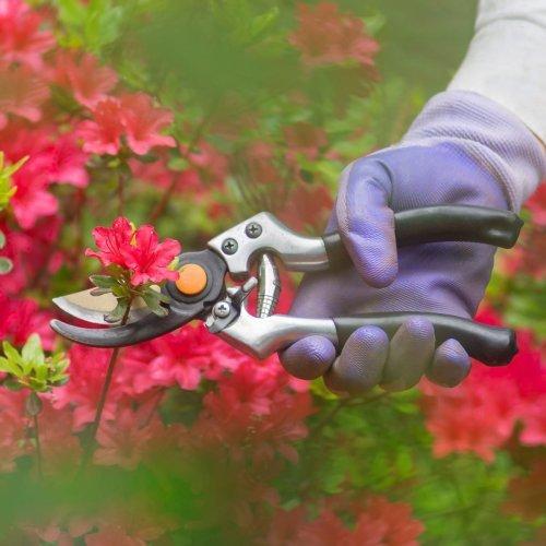 How to Prune Your Garden Flowers