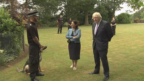 Boris Johnson admits pet dog's 'endless romantic urges'