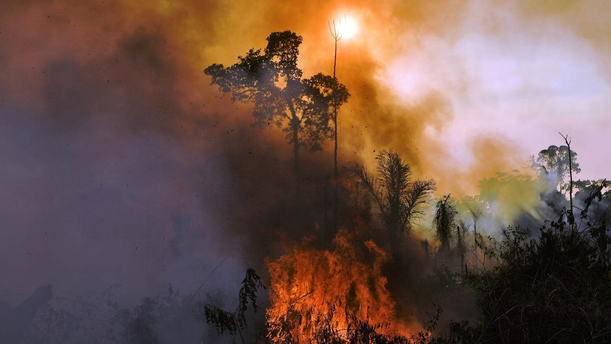 5 Environmental Stories To Show How Bad Our Climate Is