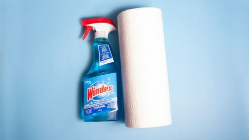 Why You Should Think Twice About Cleaning With Windex