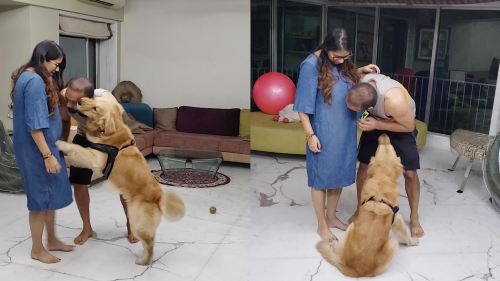 'Jealous Dog doesn't want Owner to Love his Pregnant Wife'