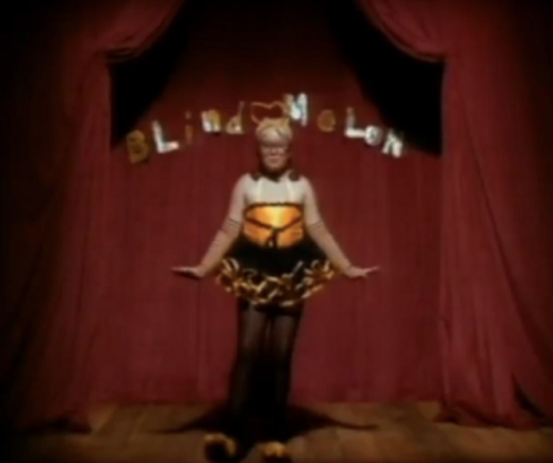 Here's what Blind Melon's 'bee girl' is up to now