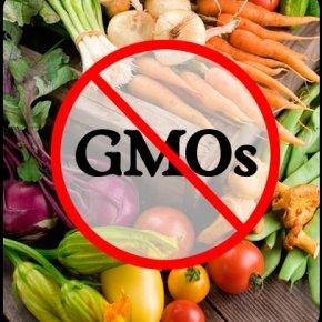 No GMOs Verified cover image