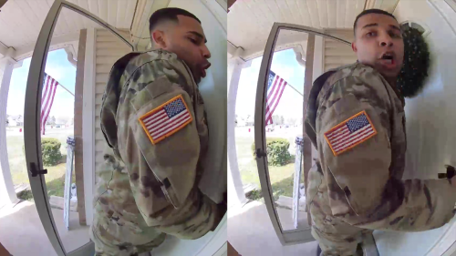 'US Serviceman Freaks Out after Seeing a Wasp Outside his House'