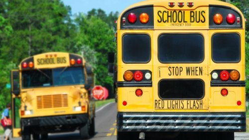 Bus driver fired after making racist George Floyd remark to Black child