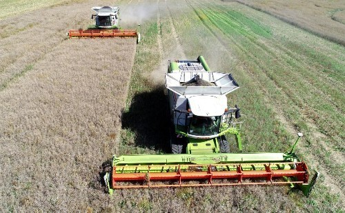 BRN Focus | High tech indoor farming