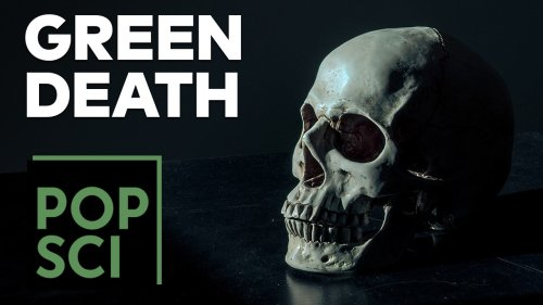 How to Die in an Eco-Friendly Way   Green Death 101