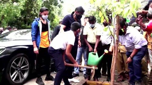 Bollywood stars plant trees in Mumbai