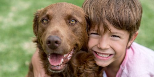 It's Adopt a Shelter Dog Month! Here Are 8 Things You Need to Know
