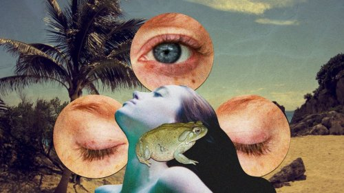 Magazine - CANNABIS/ PSYCH DRUGS