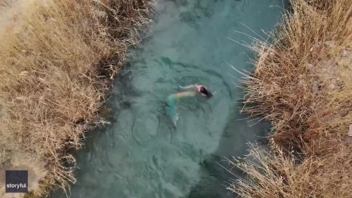 Drone Footage Shows Woman in Mermaid Costume Swimming Through Utah River