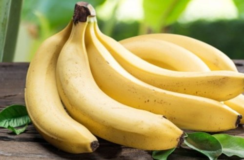Foods You'll Refuse To Eat Once You Realize How They Are Grown