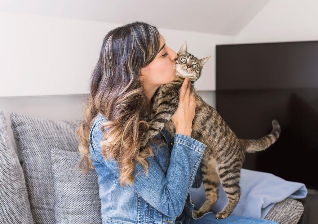 13 Signs That Your Cat is Obsessed With You