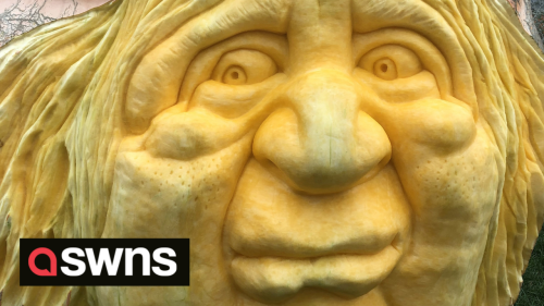 US pumpkin carver accidentally creates face of UK PM when trying to carve female witch