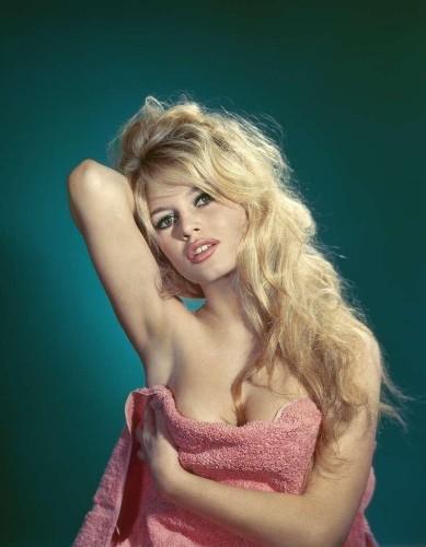 """""""Brigitte"""" cover image"""