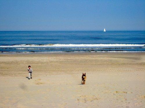 Holland - die schönsten Orte für einen Urlaub am Meer