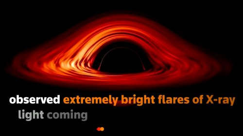 Scientists spot light echo from behind a black hole