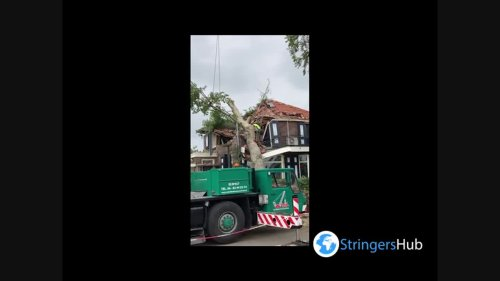 Netherlands: Clearing downed trees and debris after powerful winds blast Utrecht